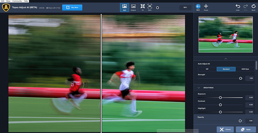 Topaz Labs Adjust AI: too much Artificial Intelligence can kill your