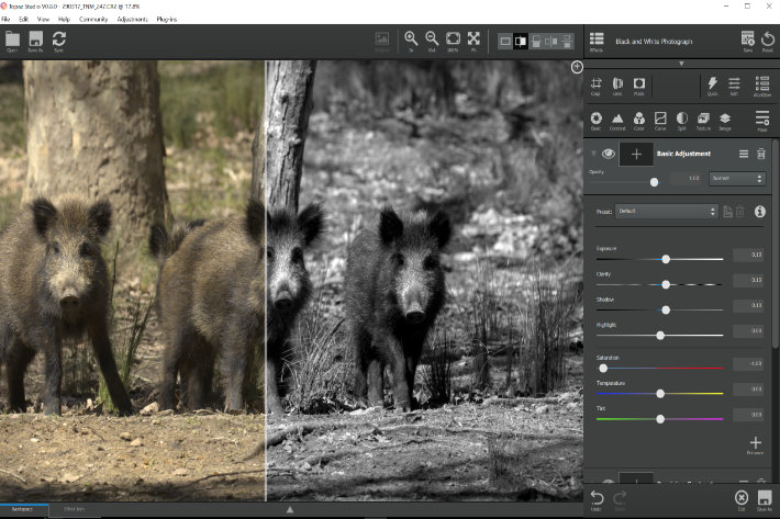 Topaz Studio: a new photo editor for 2017 by Jose Antunes - ProVideo