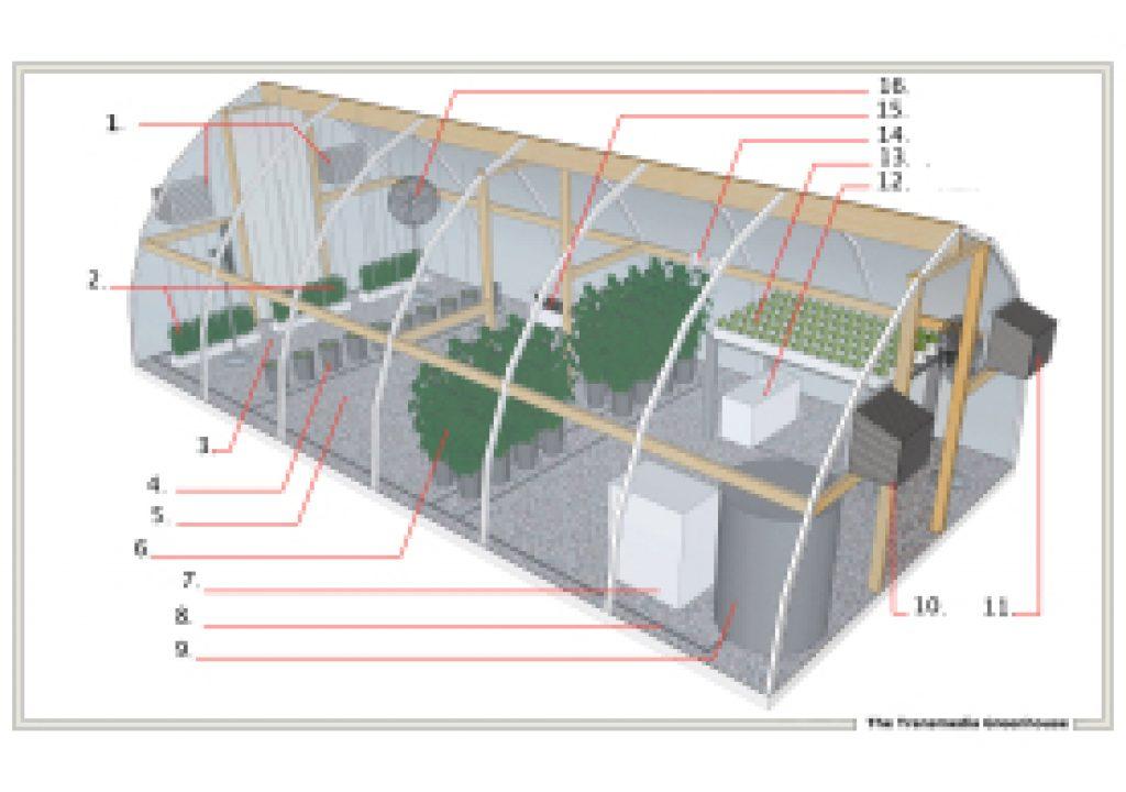transmedia-greenhouse.jpg