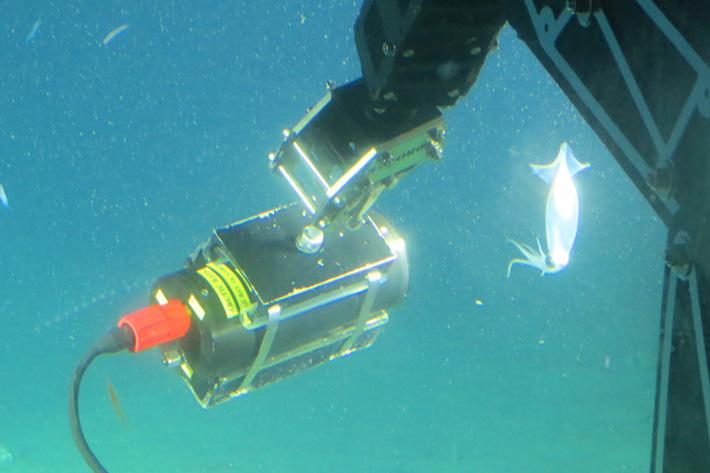 Micro Studio Camera 4K goes deep underwater
