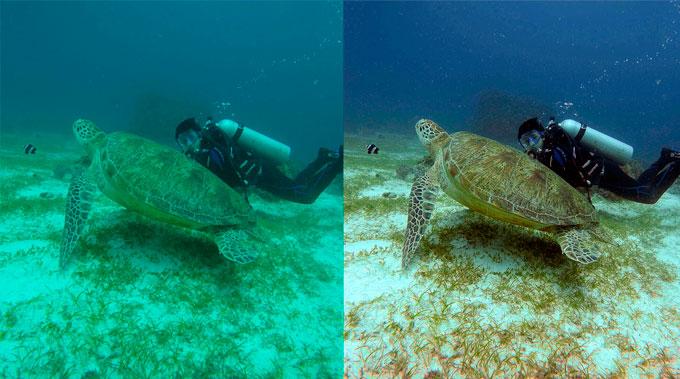 Nemo, Titan and Mito: three new 4K underwater drones for filmmakers 23