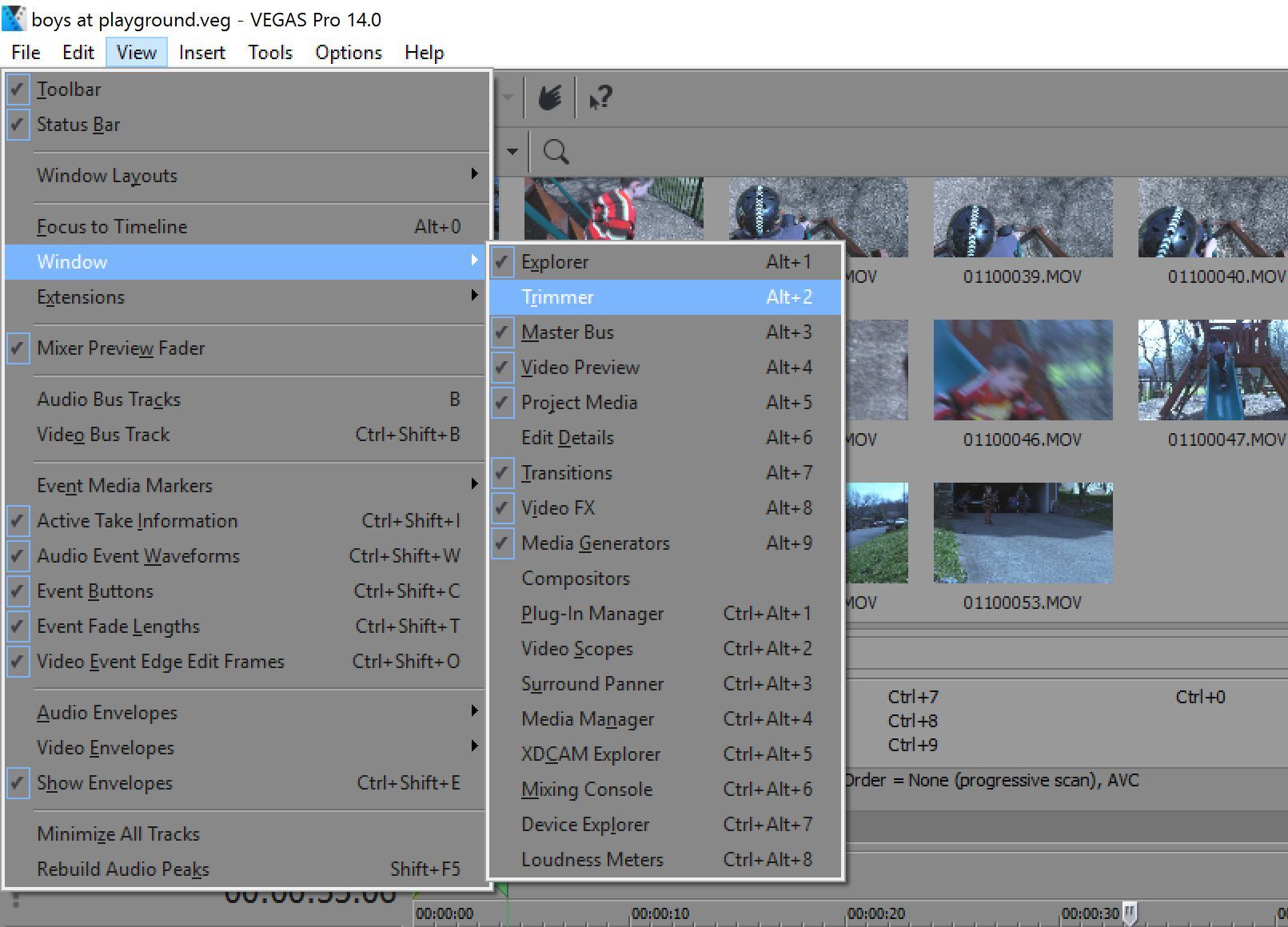 The one feature from VEGAS Pro I want in my other NLEs 3