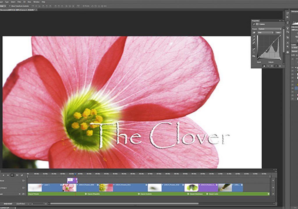 videophotoshop02.jpg